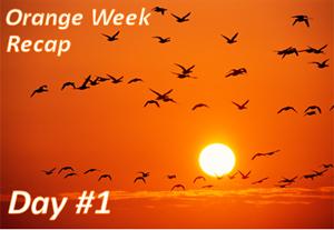 Orange Week Recap Day 1